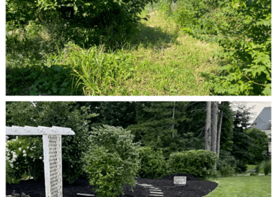 Landscaping Install BeforeAfter_3