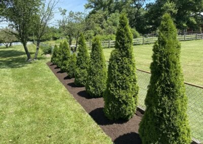 Spring Cleanup with Bed redesign and mulch installation